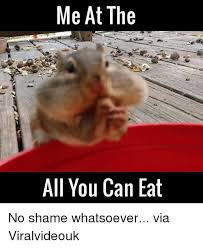 Meme Eat - 25 best memes about all you can eat all you can eat memes