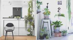 lovely 15 indoor garden ideas for wannabe gardeners in small