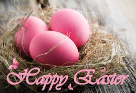 pink easter eggs easter eggs nest pink color holidays