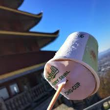 Family Garden Reading Pa Pagoda Skyline 85 Photos U0026 31 Reviews Landmarks U0026 Historical