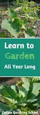 Walled Garden City Guilds by Best 20 Flora Garden Ideas On Pinterest