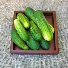 cucumber seeds pickling