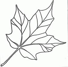 printable leaf pictures coloring home