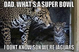 Jaguars Memes - jaguars super bowl quickmeme