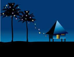 christmas palm trees phillip u0027s natural world