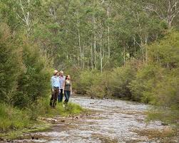 Nature Activities images Things to do in blue mountains australia one only resorts jpg
