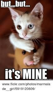 Mine Meme - cataddictsanonymouse but it s mine wwwflickrcomphotosmarmalade