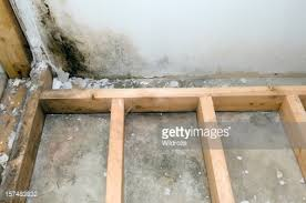 mold growing in basement bathroom stock photo getty images