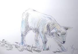 art by mike jory sketchbook lamb sketch u0027taking a bow u0027