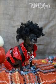 Chihuahua Halloween Costume 40 Dog Halloween Costumes Images Animals Dog