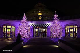 phipps conservatory christmas lights phipps conservatory and botanical gardens botanic garden in