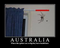 Australia Meme - australia know your meme