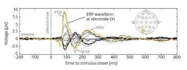 eeg electroencephalography the complete pocket guide