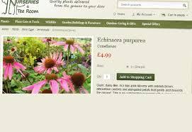 Landscape Nurseries Near Me by Buy Plants Online Online Garden Centre And Plant Nursery