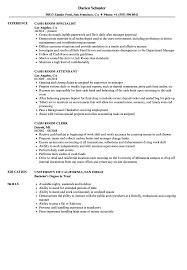 sle resume templates accountants office log cash room resume sles velvet jobs