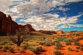 Landscape Rock Utah by Arches National Park Arches National Park Utah Rock Utah Usa