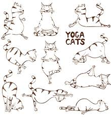 funny sketch cat doing yoga position vector my artistic