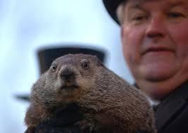 groundhog misuse cliche