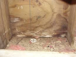 inspecting permanent wood foundation