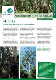 native plants south east queensland regional ecosystem 12 3 2 by healthy land and water issuu