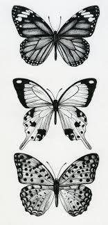 alderson la butterflies ideas