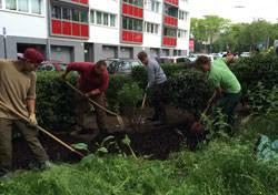 g rtner garten und landschaftsbau gärtner in der fachrichtung garten und landschaftsbau
