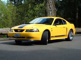 mustang ricer ford mustang photo gallery screaming yellow mach 1 shnack com