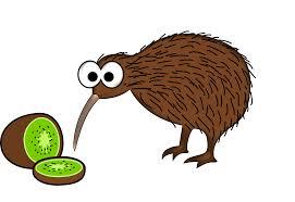 clipart cartoon kiwi bird with kiwi fruit