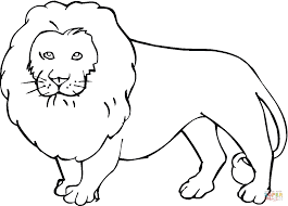 lion coloring page free printable coloring pages