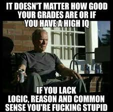 Common Sense Meme - if you lack common sense you re just stupid clint eastwood meme