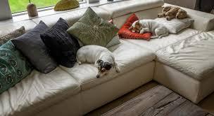 lolet canapé le canapé lit comment l installer maison travaux