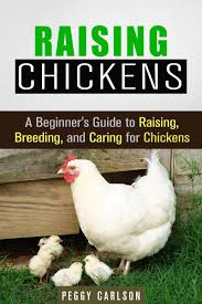 buy a beginner u0026 39 s guide to poultry farming in your backyard