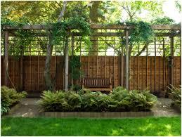 backyards winsome backyard ideas for privacy backyard privacy