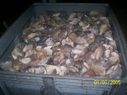 cuisine mauritanienne poisson de mauritanie societe mauritanienne de peche commerce et