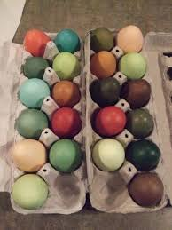how to dye eggs with food coloring countryside network