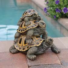 179 best turtle babies tortoises images on tortoises