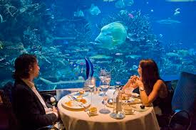 burj al arab hotel aquarium icm international concept management