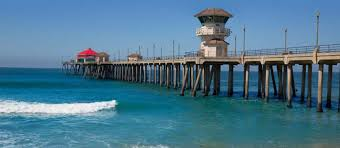 surf city cup home