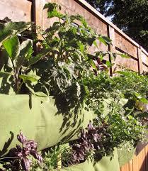 Vertical Kitchen Garden Edible Walls