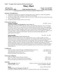 experience resume exles resume professional experience exles exles of resumes work