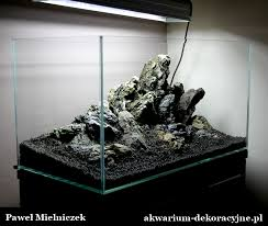 hardscape aquascaping pinterest aquariums aquarium ideas
