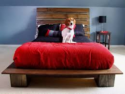 pet elevated dog bed with stairs innovative elevated dog bed