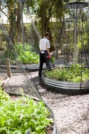 best 25 raised vegetable garden beds ideas on pinterest