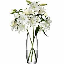 Single Stem Glass Vase Lsa Flower Grand Stem Vase 41cm Single Wine Glasses U0026 Glassware