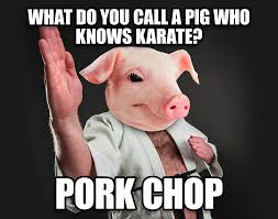what do you call a pig who knows karate the annoying orange