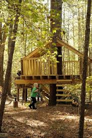 Simple Backyard Tree Houses by 145 Best Diy Tree House Images On Pinterest Treehouses