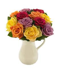 multi colored roses classic multi colored roses in a pitcher at from you flowers