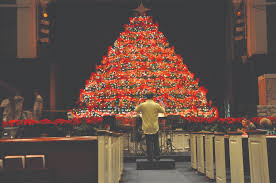 Bellevue Baptist Church Singing Christmas Tree by 100 Christmas Tree In The Bible The Bible And Christmas
