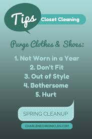 closet cleaning closet cleaning tips and ideas charlene chronicles