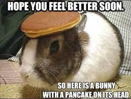 Funny Feel Good Memes - funny feel better memes image memes at relatably com
